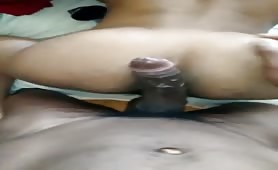 Huge beefy cock banging a hot booty